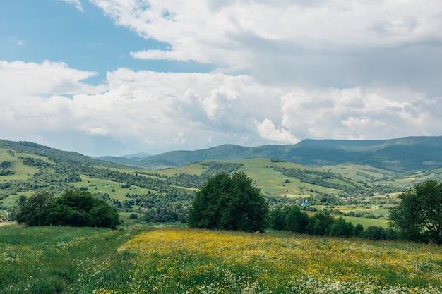 Летняя панорама гор в карпатах