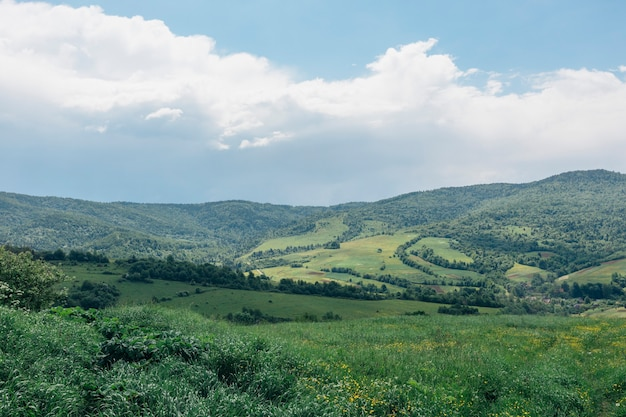 Carpathians에서 산의 여름 파노라마