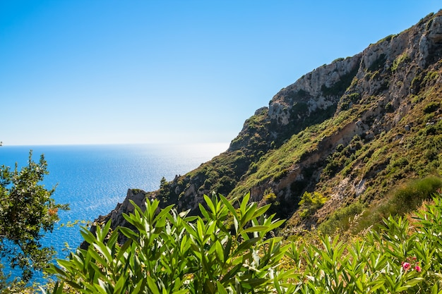 Summer panoramic seascape