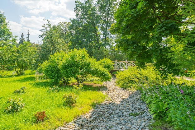 화창한 날에 여름 공원 나무와 골목.