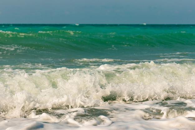 바다 풍경의 여름 사진입니다.
