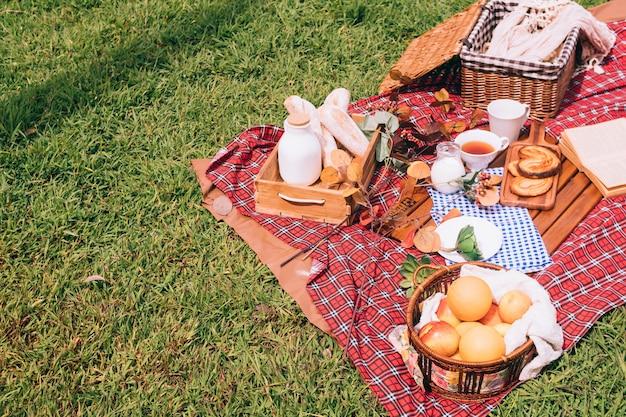 公園の毛布の上に食べ物のバスケットと夏のピクニック。テキスト用の空き容量
