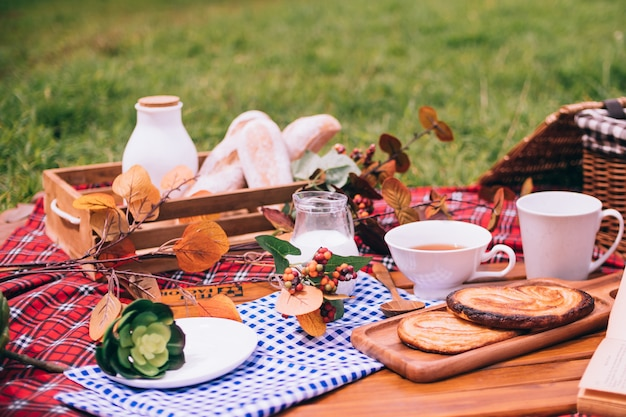 Summer picnic with a basket of food on blanket in the park.