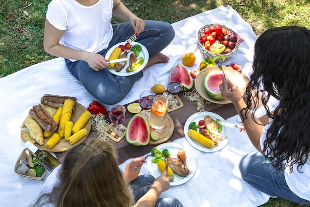 Summer picnic with friends in nature with food and drinks.