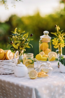 Summer picnic with lemonade and macaroons