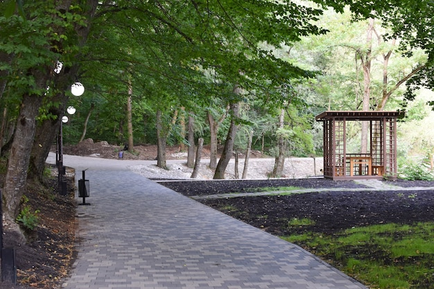 Summer picturesque park with road and street lamps. path in city green forest.