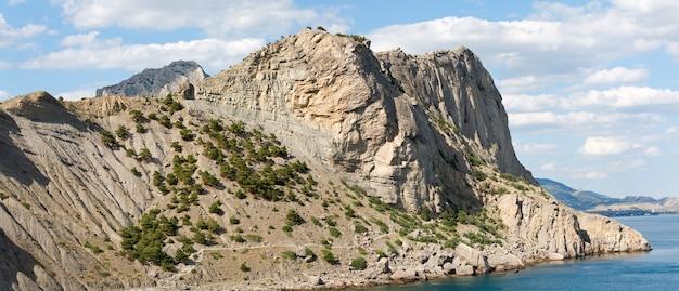 Летний скалистый берег с соснами (заповедник «новый свет», крым, украина). изображение сшивается двумя кадрами.