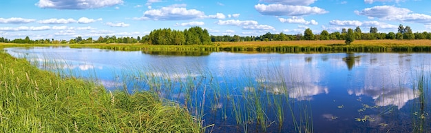 Summer rushy lake panorama view with clouds reflections.