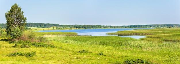 反対側の岸に小さな木立がある夏の急いでいる湖の景色。 2ショットステッチ画像。