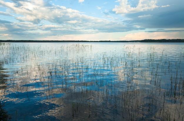 Летний бурный вид на озеро с некоторыми растениями на поверхности воды