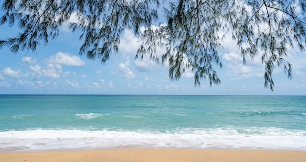 Summer sandy beach amazing sea clear blue sky and white clouds wave crashing on sandy shore tree leaves frame over sea.