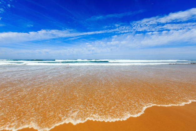 Summer sandy beach with surf wave (algarve, costa vicentina, portugal).