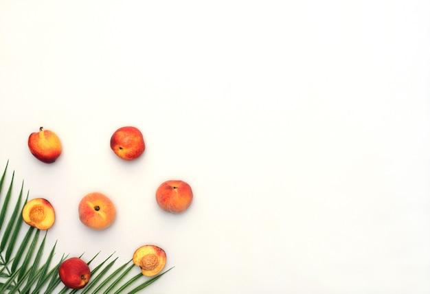 Летняя сцена с персиками, нектаринами, пальмовыми листьями на белом фоне, плоский стиль с копией пространства