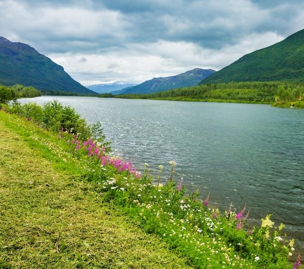 野生の美しい花が咲く夏のセンジャフィヨルドの海岸の景色(storelva、skaland、ノルウェー)。どんよりした曇りの天気。