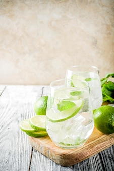 Summer sour cocktail mojito