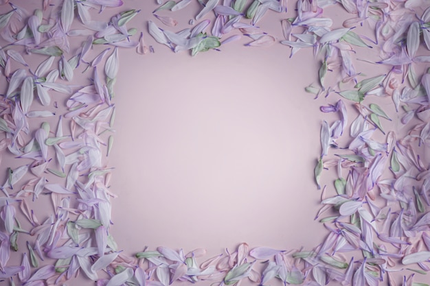 Summer spring square frame with flower petals in lilac shades, on a cream pinkish lilac matte background.