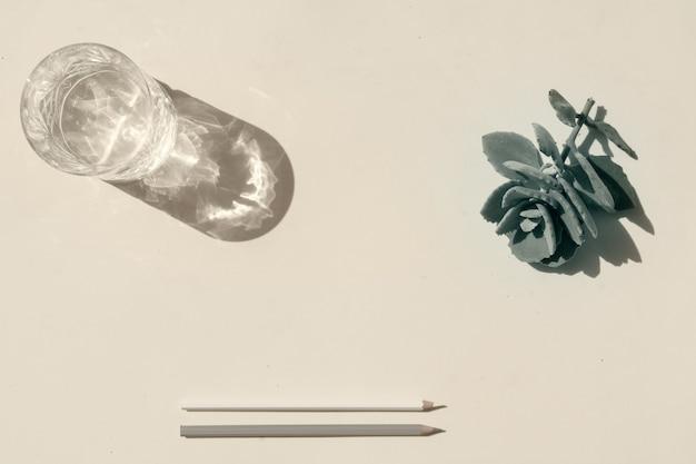 여름 문구 목업 장면입니다. 베이지색 질감의 탁자 배경에 있는 육즙이 많은 식물과 맑은 물 한 잔.