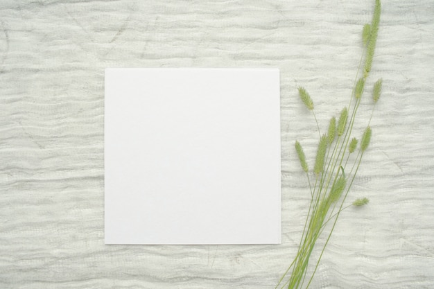 Summer stationery mockup scene with herbs, vintage spool of cotton braid, on a light background. Premium Photo