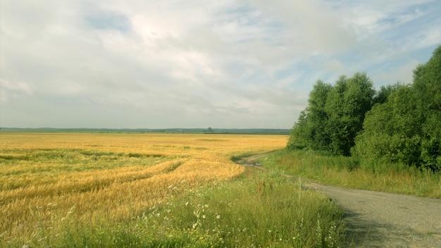 夏の晴れた日のビューの観光風景
