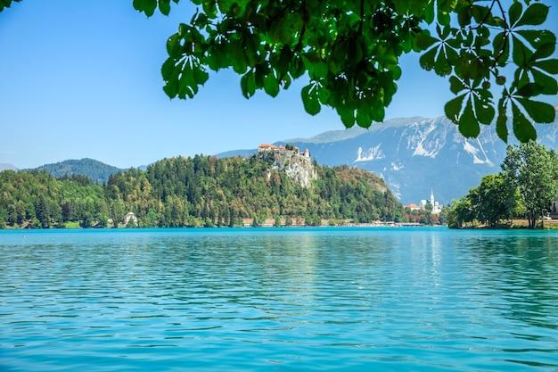 Лето и озеро выглядит великолепно