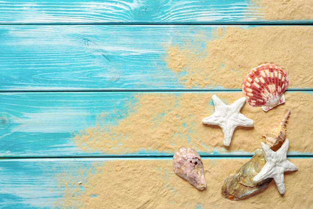 Summer time concept with sea shells background with copyspace