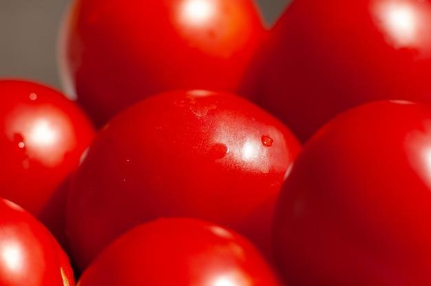 유기농 야채의 전체 여름 토마토 농업 농장 배경으로 사용할 수 있습니다.