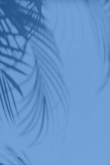 Концепция летних путешествий. тень экзотических пальмовых листьев лежит на монохромном цветном фоне. модный синий и спокойный цвет.