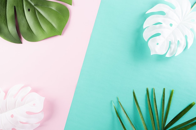 Summer tropical colorful background with palm and monstera leaves
