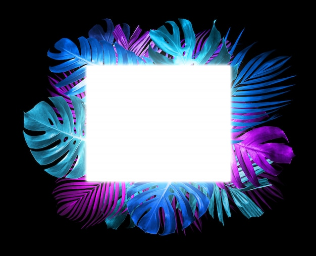 Summer tropical leaves and light box on black background trend neon style