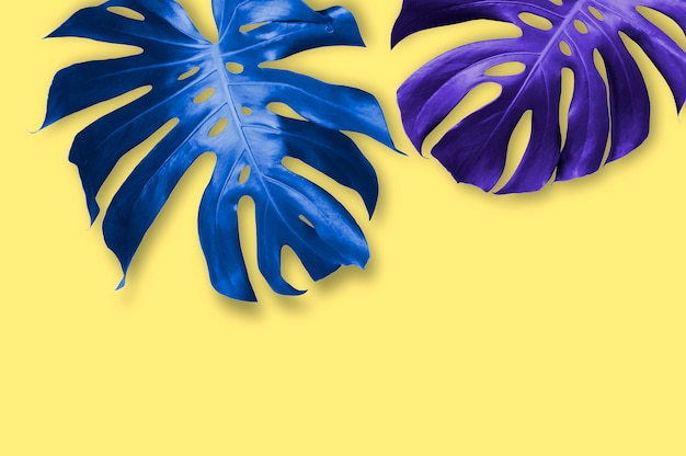 Summer tropical leaves on yellow background with copy space minimal style