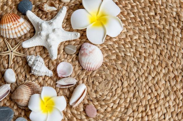 여름 휴가 개념입니다. 흰색 frangipani 꽃, 조개 및 불가사리