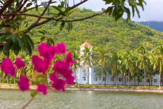 빌라, 아름다운 배경에서 여름 휴가. 꽃과 야자수 잎의 근접 촬영입니다.