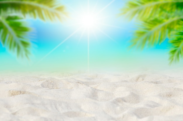 Летние каникулы белый песчаный пляж с пространством для текста, кокосовые листья, задняя рамка, вид на море, энергетический пол