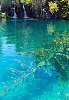 Summer view of beautiful small waterfalls and  trunk of dry tree at the lake bottom (plitvice lakes national park, croatia)