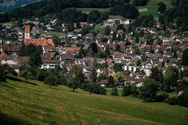 スイスの美しいアライン村の夏の景色。緑の野原、スイスの村の木製の柵のある歩道。