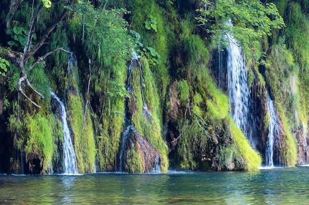 아름다운 작은 폭포와 맑은 호수의 여름보기 (크로아티아 플리트 비체 호수 국립 공원)