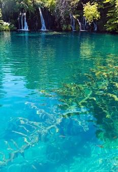 호수 바닥에 아름다운 작은 폭포와 마른 나무의 줄기의 여름보기 (플리트 비체 호수 국립 공원, 크로아티아)