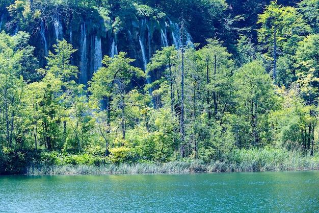 큰 폭포와 작은 숲의 여름보기 (크로아티아 플리트 비체 호수 국립 공원)