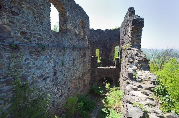 ネヴィツキー城遺跡の夏の景色(ウクライナ、ザカルパッチャ州、ウジホロドの北12 kmのカメニツァ村)。 13世紀に建てられました。