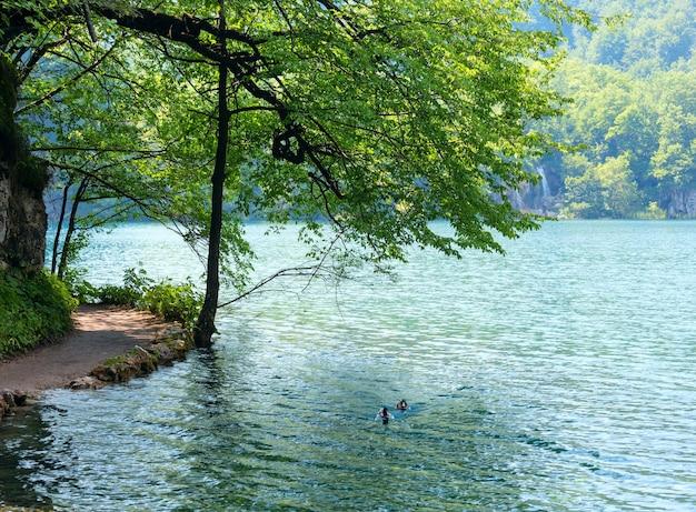 플리트 비체 호수 국립 공원 (크로아티아)의 여름 폭포, 호수 및 야생 오리