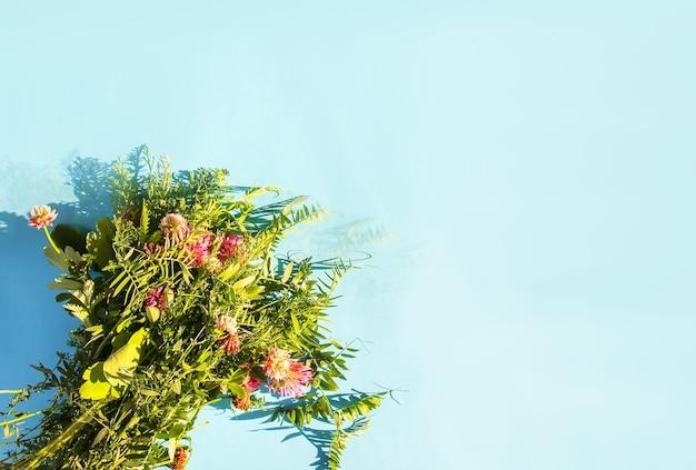 Летние полевые цветы на синем пастельном фоне в солнечном свете.