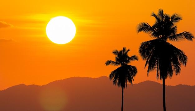 Лето с кокосовыми пальмами в углу на фоне большого солнца.