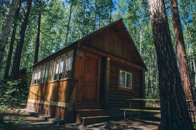 자작 나무 숲에서 여름 목조 주택입니다. 숲에서 캠핑. 친환경 건설