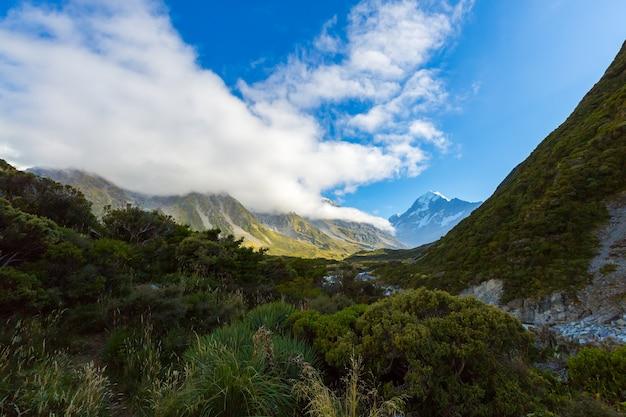 Summertime view of aoraki mount cook national park, south island new zealand