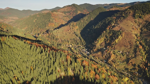 山頂の太陽の秋の木々のコテージの田舎道の空中誰も自然の風景