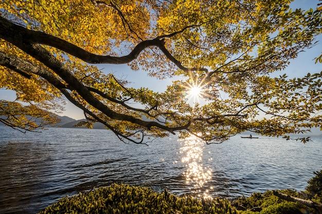 未定義の旅行者が湖の周りにカヤックをしている湖のそばの太陽
