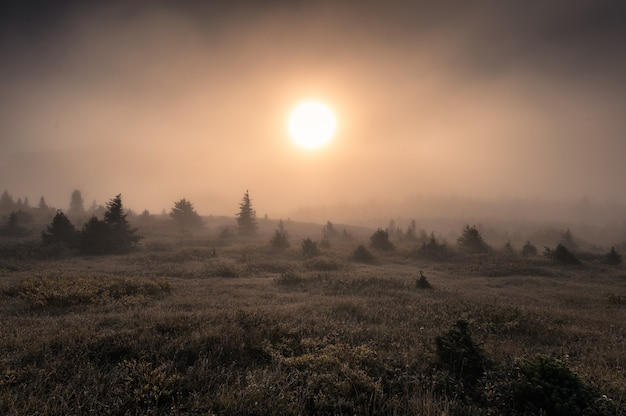 Sun on hill in foggy on the morning