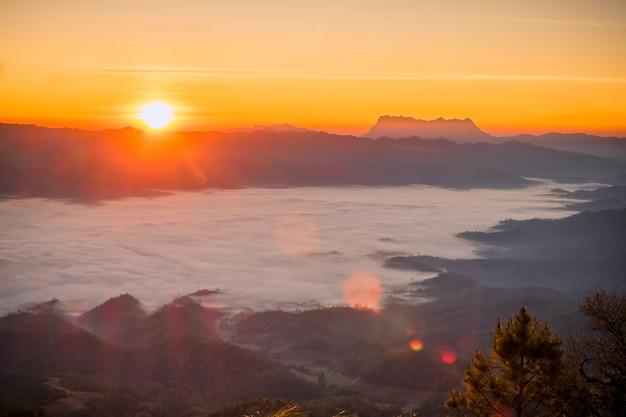 日の出の山の霧の上の太陽