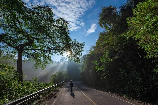 光の効果と影のある美しい緑の森に囲まれた曲がりくねった風光明媚な道路を照らす霧の中の太陽光線。ケーンクラチャン国立公園、ペッチャブリー-タイ