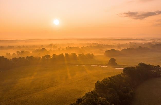 Солнце поднимается над прибрежным лесом летом с дрона
